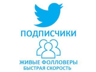 Twitter - Подписчики/фолловеры (все с картинкой на профиле) (10 руб. за 100 штук)