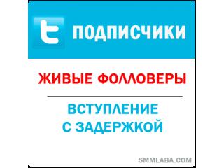 Twitter - Подписчики/фолловеры с задержкой (20 руб. за 100 штук)